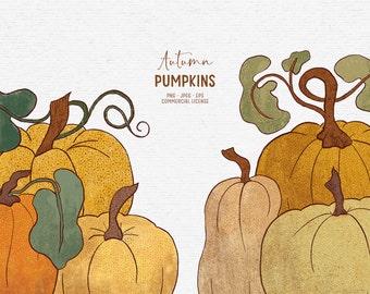 Digital hand-drawn pumpkin clipart