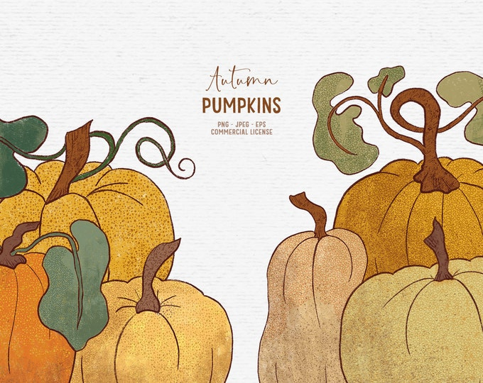 Featured listing image: Digital hand-drawn pumpkin clipart