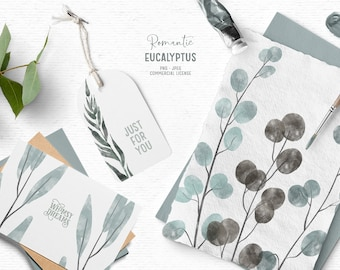 Digital watercolor Eucalyptus clipart