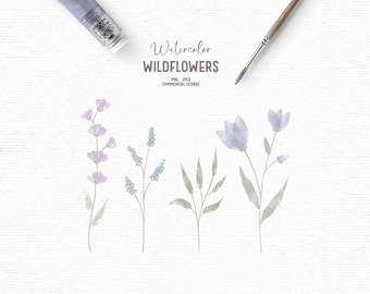 Digital hand drawn watercolor floral clipart in purple