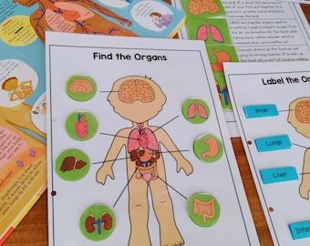 Human Anatomy Printable Busy Book, Anatomy Binder, Kindergarten and Preschool Science, Human Body Parts, Five Senses, Body Organs & Systems