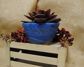 Wheel-thrown and Hand-decorated Ceramic Clay Bonsai Pot Plant Container Holder with Drainage Holes and Blue Separation Glaze   Home Decor