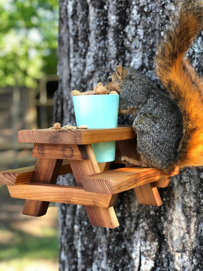 The coolest squirrel and chipmunk feeder on the market!