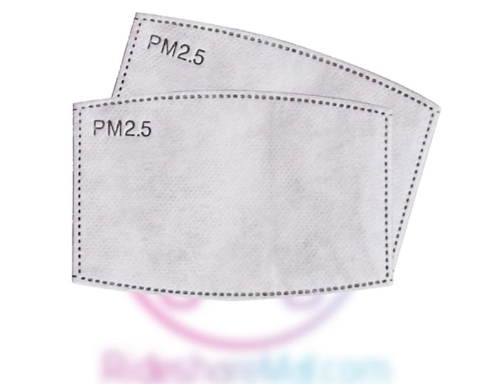 Facemask Replacement Filters 2 Pack