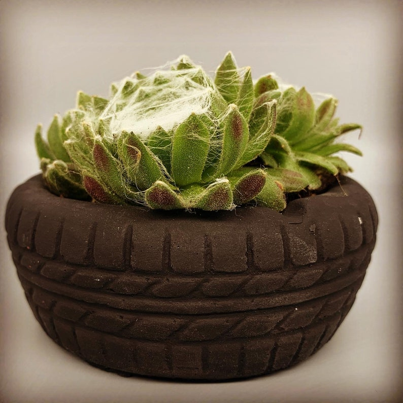 Unique Ashtray Car Tire Tyre with a succulent Perfect gift for him