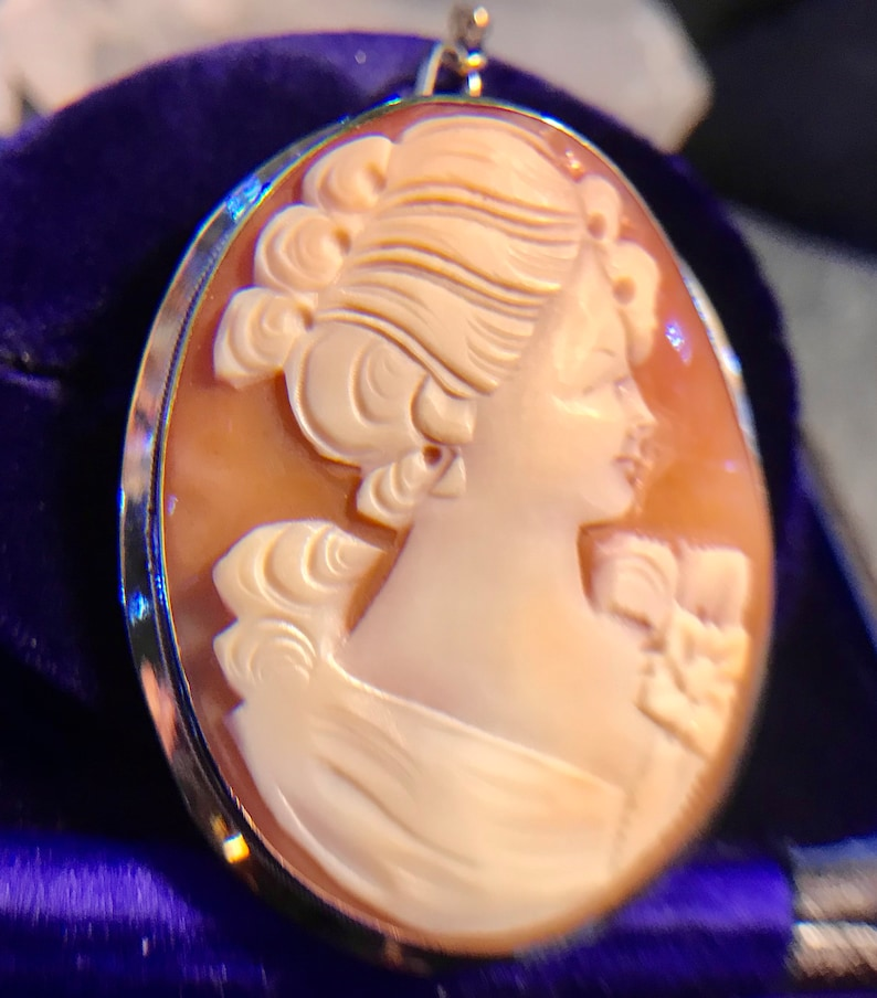 Edwardian Italian Hand carved Conch shell Cameo Brooch Gold Brooch Circa 1900/'s Gold Safety Chain