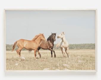 Three Horses Print, Horse Wall Art, Modern Farmhouse Art, Horse Print, Large Wall Art Horse Photography Rustic Horse Printable Digital Horse