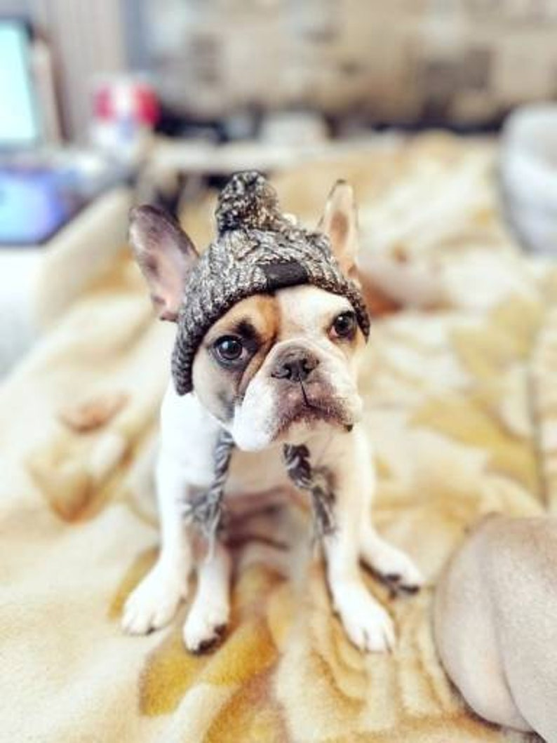Dog Winter Hat  Knitted Pet Hat Hat For Dogs Dog Beanie image 0
