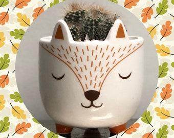 Cactus Planting Kit Gift - Ceramic Fox Planter