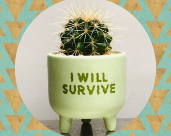 Cactus Planting Kit - 'I Will Survive' Green Planter with Feet