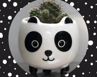 Cactus Planting Kit Gift -  Panda Planter