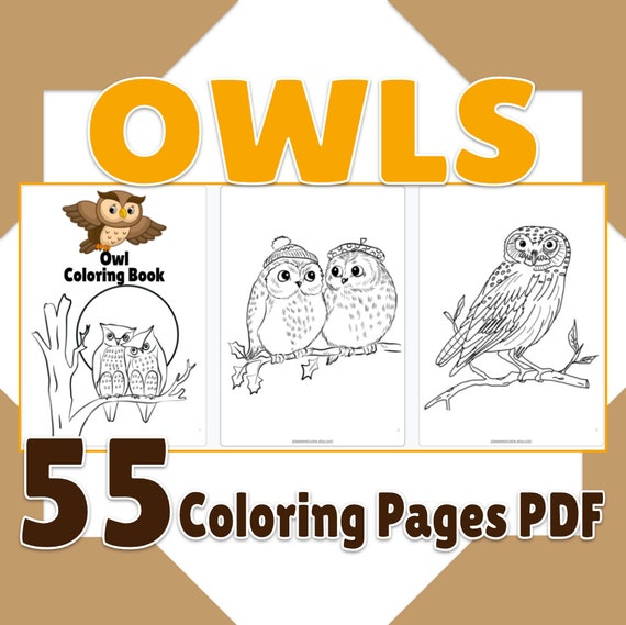 Owl Coloring Pages Printable Owl Coloring Book 55 Page PDF