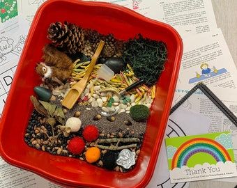 Into the Woodland Sensory Play in a Bag / Fuzzy Squirrel  / Montessori Learning