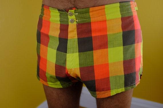Cute 1960s Plaid Shorts/Bathing Trunks