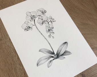 Botanical Print, Floral Print, Botanical Wall Art, Botanical Decor, Art Print, Vintage Wall Art, Modern Decor, Black and White Print