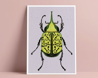 """A5 art print beetle - insects - illustrated beetle - A5 cards 5.8"""" x 8.3"""" - wall decoration - pastel color - fantasy beetle illustration"""