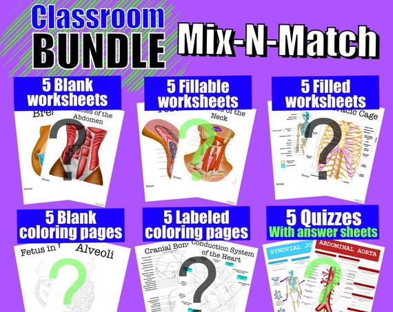 Build-Your-Own Classroom Worksheet Bundle - 30 Pages