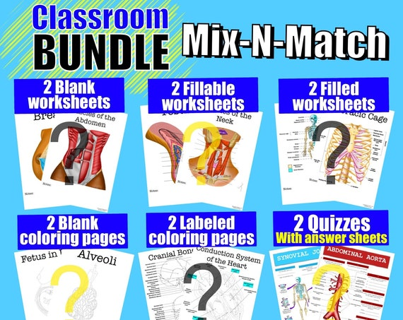 Build-Your-Own Classroom Worksheet Bundle - 12 Pages