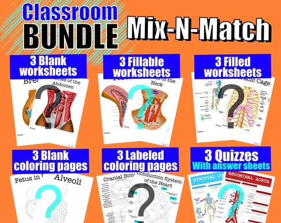 Build-Your-Own Classroom Worksheet Bundle - 18 Pages