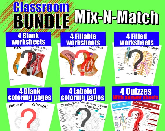 Build-Your-Own Classroom Worksheet Bundle - 24 Pages