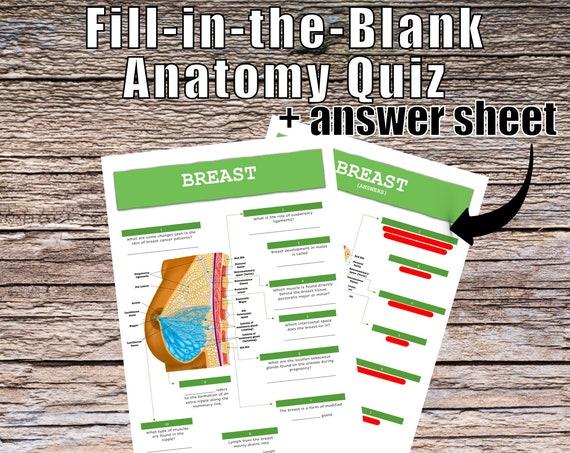 Breast Anatomy QUIZ Worksheet + Answers