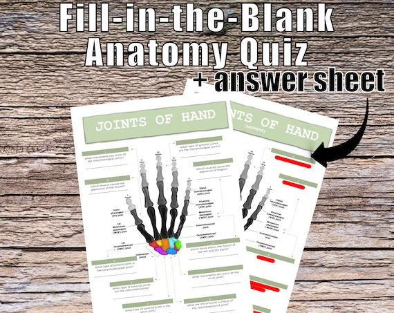 Joints of the Hand Anatomy QUIZ Worksheet + Answers