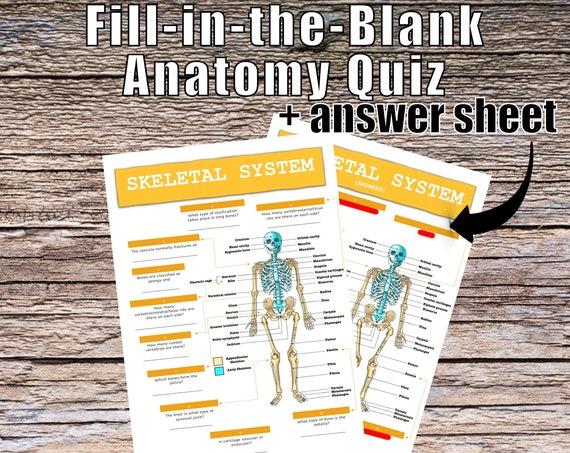 Skeletal System Anatomy QUIZ Worksheet + Answers