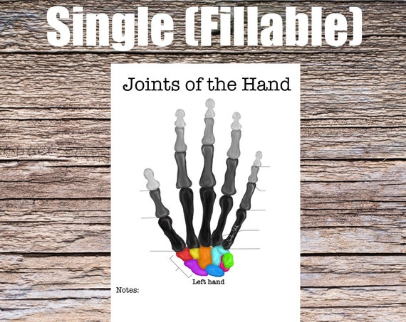 Joints of the Hand Anatomy Worksheet (SINGLE FILLABLE)