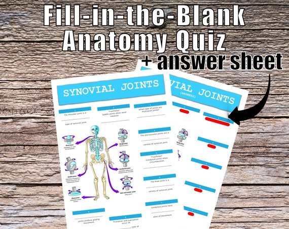 Synovial Joints Anatomy QUIZ Worksheet + Answers