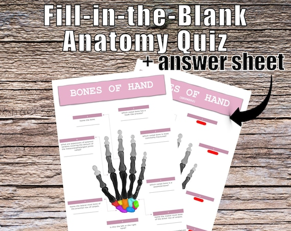 Bones of the Hand Anatomy QUIZ Worksheet + Answers