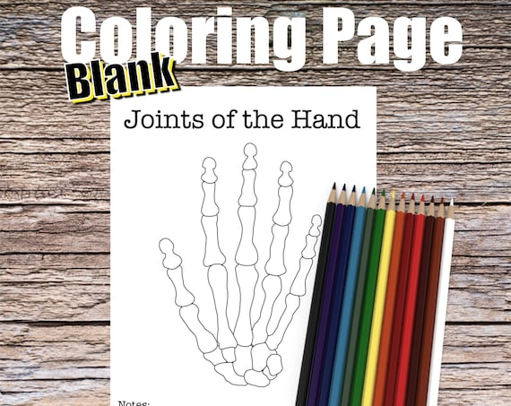 Joints of the Hand Anatomy Coloring page (BLANK)