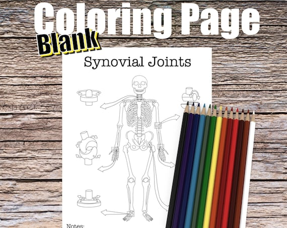 Synovial Joints Anatomy Coloring page (BLANK)