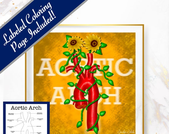 Sunflower Aortic Arch Printable, 30 x 30 Wall Art, Coloring Page Included