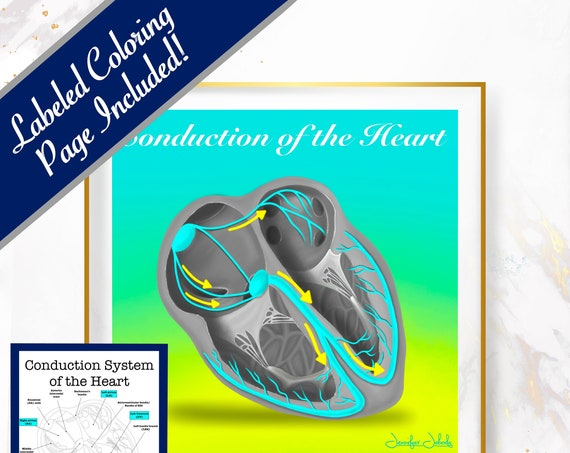 Conduction of the Heart, Printable, 30 x 30 Wall Art, Coloring Page Included