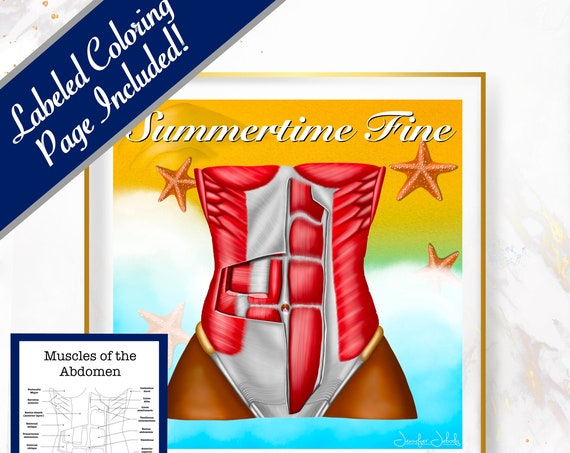 Summertime Fine Abs, Printable, 30 x 30 Wall Art, Coloring Page Included