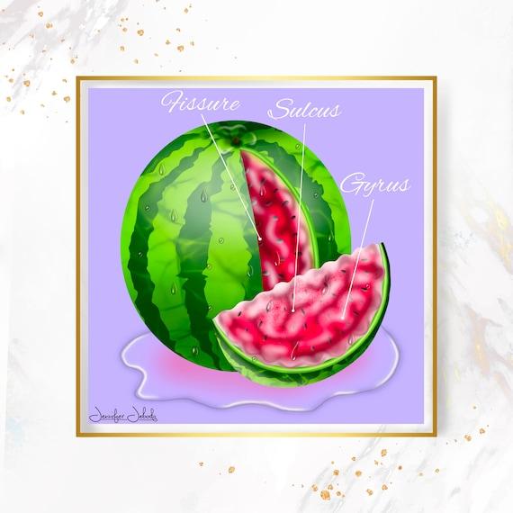 Fruity Juicy Cerebrum, Printable, 30 x 30 Wall Art, Watermelon