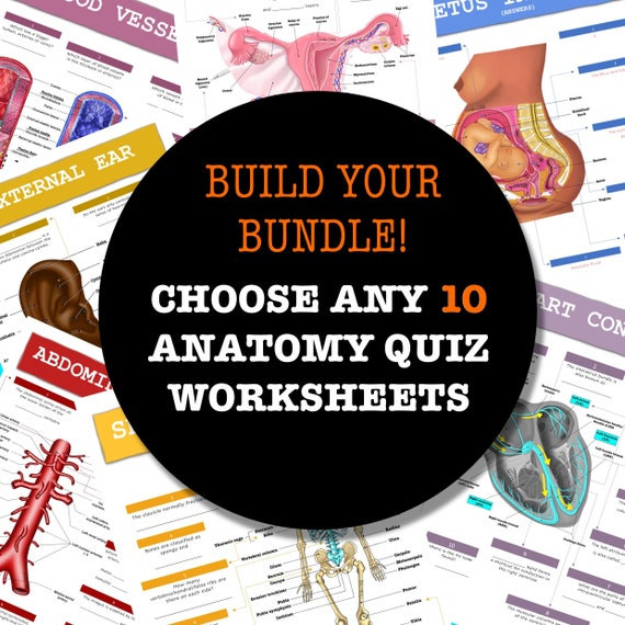 Build-Your-Own Anatomy Quiz Worksheet Bundle - 10 Pages