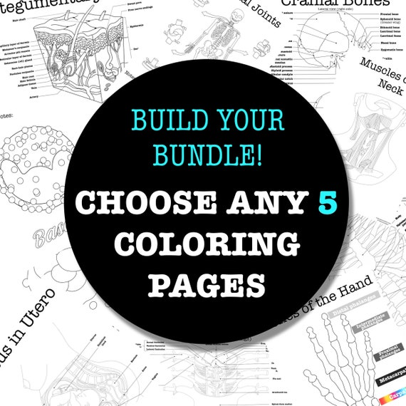 Build-Your-Own Coloring Page Bundle - 5 Pages