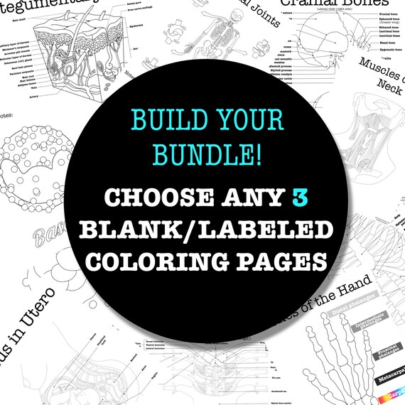 Build-Your-Own Coloring Page Worksheet Bundle - 3 Pages