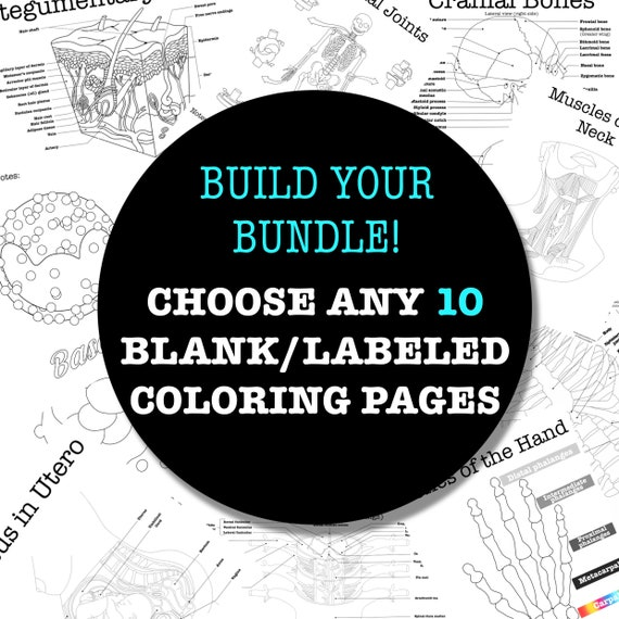 Build-Your-Own Coloring Page Worksheet Bundle - 10 Pages
