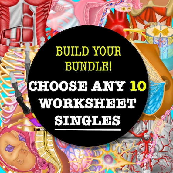 Build-Your-Own Worksheet Set Bundle - 10 SINGLES