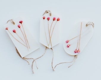 Aroma Block - Freesia & Rose Paradise - Flower Power