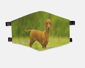 Daschund Fabric Face Mask 100% Cotton with Stretch Loops