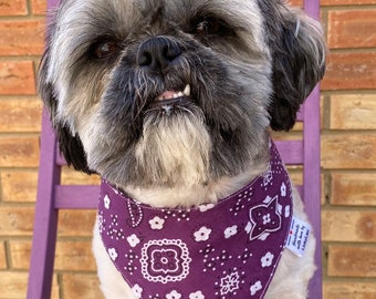 Funky Dog Bandana Printed Bandana Dog Neckerchief Pet Accessories Paisley  Dog Bandana Dog Accessories Dog Bandana Over The Collar