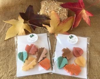 Fall Leaf Soaps Set of 5 assorted