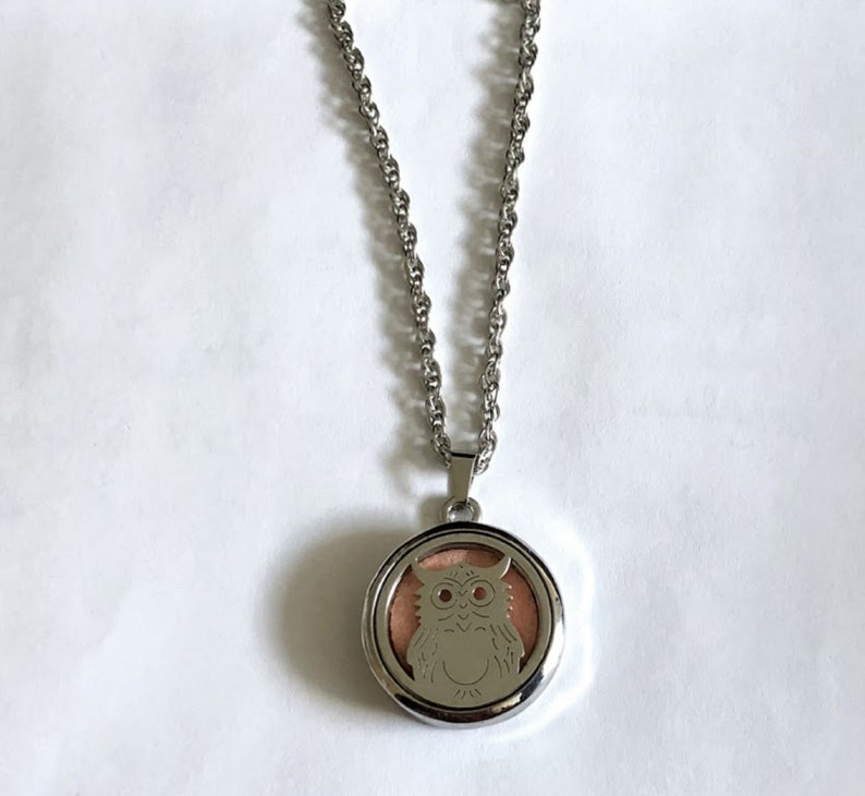 Aromatherapy Essential Oils PendantNecklace or BroochPin Stainless Steel