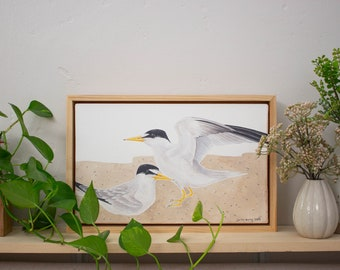 ORIGINAL    California Least Tern