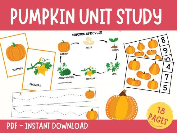 Pumpkin Unit Study Pumpkin Themed Printable Fall Activity