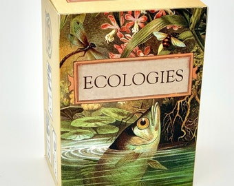 Ecologies Card Game - Gameplay Inspired by Nature - Use Science to Build Food Webs in Seven Unique Biomes - Beautiful Vintage Art