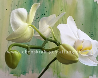 Orchid   artistically   Photo   Download   Poster   Self-printing   Gift   Decoration